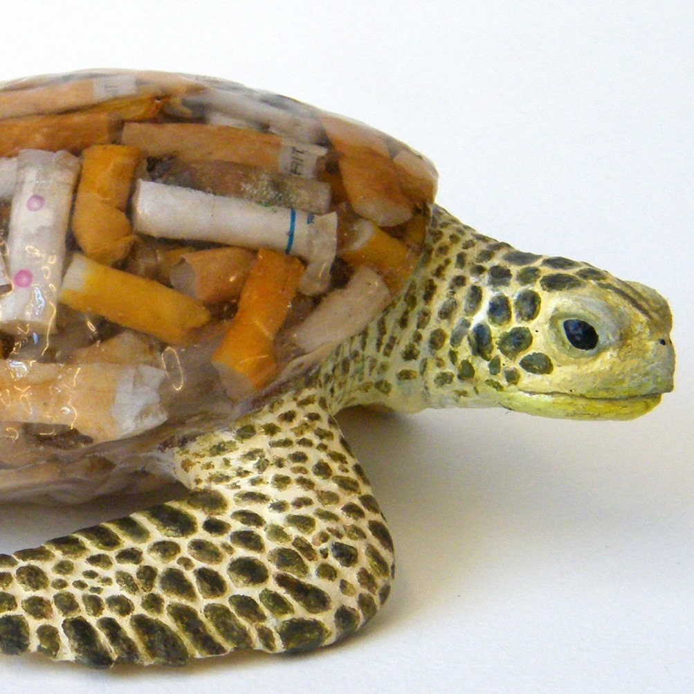 Fag End Turtle by ScapaJoe - Environmental Artist